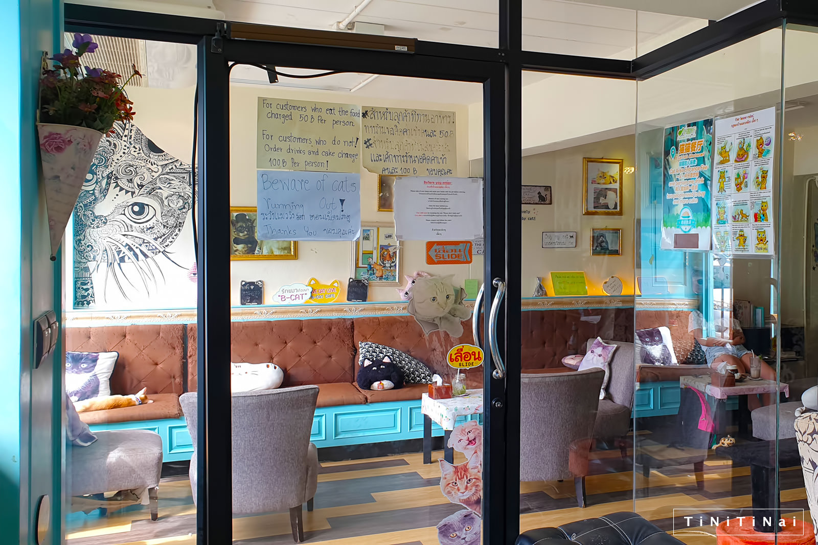 B Cat Cafe in Phuket Town